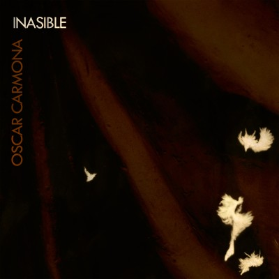 INASIBLE-COVER